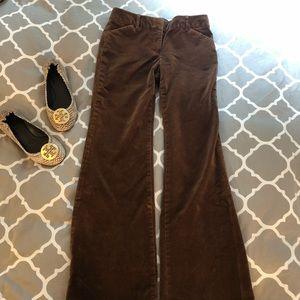 Victoria Secret Brown Velvet Pants 🍁